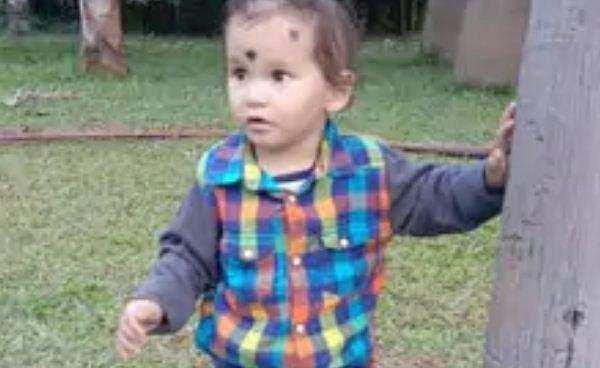 उत्तराखंड | ढाई साल के मासूम को मां की गोद से उठा ले गया तेंदुआ, परिवार में मचा कोहराम
